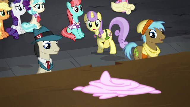 File:Sunshine Petals stops to watch S5E16.png