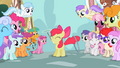 The ponies admire Apple Bloom S2E06.png