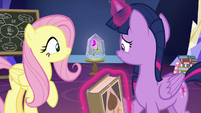 Twilight and Fluttershy look at the flower S9E22
