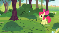 Apple Bloom -Look!- S4E17