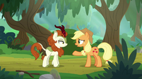 Applejack -any idea where I should look-- S8E23