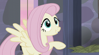 "Fluttershy ""and, and..."" S5E02"