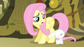 Fluttershy 'to sing on stage in front of everypony' S4E14.png