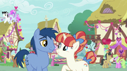 Hearts and Hooves day couples in Ponyville S8E10