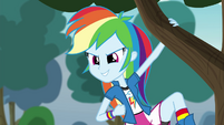 Rainbow Dash checks out the competition EG3