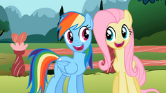 Rainbow and Fluttershy smile S2E07