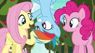 S06E18 Rainbow, Fluttershy i Pinkie