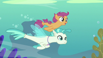 Scootaloo and Terramar sail through wavy blue S8E6