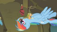 Tiny Applejack brandishing a lasso S1E09