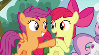 Apple Bloom and Scootaloo hoof-bump S7E21