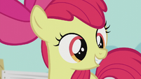 Apple Bloom hears Pipsqueak S5E18