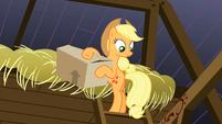 Applejack -found it- S3E8
