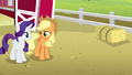 Applejack and Rarity look at each other S6E15.png