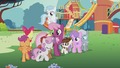 CMC sing and circle around Cheerilee and foals S5E18.png