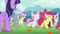 Cutie Mark Crusaders enjoying their popularity S7E14.png