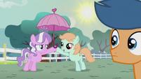 Diamond Tiara gives a parasol to Peach Fuzz S5E18