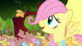 Filly Fluttershy looking at the butterfly S1E23.png
