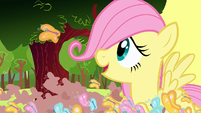 Filly Fluttershy looking at the butterfly S1E23