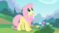 Fluttershy watching Rainbow Dash attempt sonic rainboom S1E16