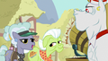 """Jeweler Pony """"ever since that Trixie came by"""" S7E2.png"""