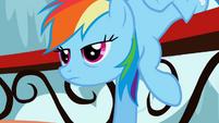 Rainbow Dash, Eeyup S1E04