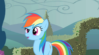 Rainbow Dash without wings S02E01