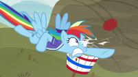 Rainbow Dash working up a sweat S6E18