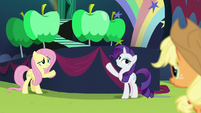 Rarity and Fluttershy showing Applejack their contribution S5E24