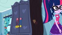 Twilight Sparkle following Rainbow Dash SS12