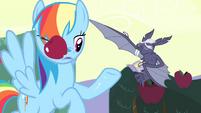 Vampire fruit bat swats apple away S4E07