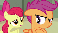 Apple Bloom giving Sweetie's message to Scootaloo S8E6