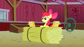 Apple Bloom hearing Granny Smith S3E08.png