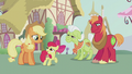 Apple Bloom thanking Applejack S5E18.png