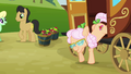 Apple Rose coming out from the carriage S3E08.png