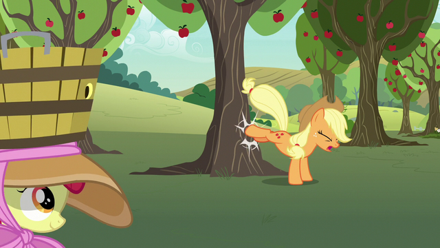 File:Applejack bucking another apple tree S7E9.png