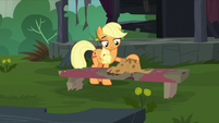 Applejack puts her hat on a bench S5E16
