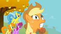 Applejack strains herself S1E13