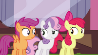Cutie Mark Crusaders looking confused S4E15