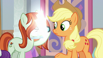 Photographer taking Applejack's picture S8E13