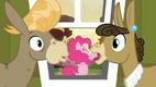 Pinkie Pie interrupts S2E18