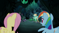 """Rainbow Dash """"I know he needs to learn"""" S6E11.png"""