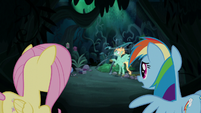 "Rainbow Dash ""I know he needs to learn"" S6E11"