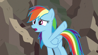 Rainbow Dash -she was trying to save you all- S7E18