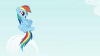 Rainbow dodges thrown rock S4E18