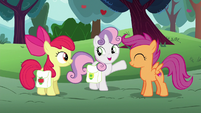 Sweetie Belle --the award for most traditional!-- S6E14