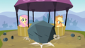 A boulder lands in front of Fluttershy and Applejack S3E09.png