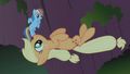 Applejack all yours partner S01E02.png