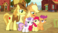 Applejack and Braeburn standing with the CMC S5E6.png