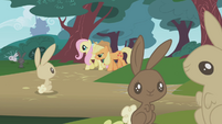 Applejack helping Fluttershy S1E04