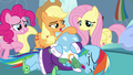 Applejack patting Tank's shell S5E5.png